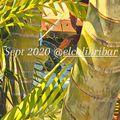 El Colibri Bar sept 2020