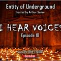 Arthur Sense - Entity of Underground #018: I Hear Voices [January 2013] on Insomniafm.com
