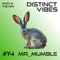 Distinct Vibes #14 Part Two: Mr_Mumble
