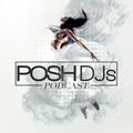 POSH DJ Andrew Gangi 12.24.19