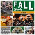 DJ Kotlyk - Fall Breaks