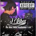JVibes - In the Mix Volume 1.0