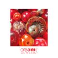 cream.cz audio #11 (2.4.2017)
