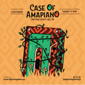 A Case of Amapiano with Dj Protege - Protege Effect Vol 36