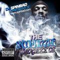 Spinbad Presents The Snoop Dizzle Mixtizzle (2011)