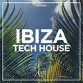 TECH HOUSE IBIZA BY MIGUEL GARCIA RAVERHOLICS RADIO CHAPTER 20
