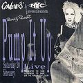 Pump It Up Live @ Palais des Congrès - Bienne - 16.06.1996