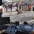 MINT Market 210926@LIVE - DJ Kotlyk