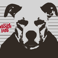 R*U*D*E IT'S A DOGS LIFE III  [Rudedog]