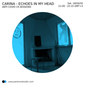 """Anti Covid19 Sessions - Carina """"Echoes In My Head"""""""