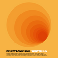 Delectronic Soul - Winter Sun - Deep, Warm & Soulful House Blend