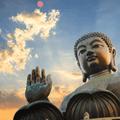 Buddha Deep Club 40