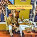 DJ AKI Slap Reis With Tone Alll Vinyl Mix