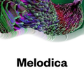 Melodica 6 July 2020