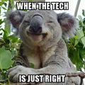 cheeky koala tech