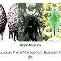 Jégre teszünk - Kapuzárási Piknik Mixtape feat. Budapest Park