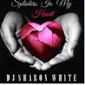 DJ Sharon White - Splinters In My Heart
