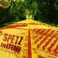 Spetz in Dub #2