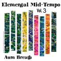 Deep Organic Melodic Vocal House - Elemental Mid - Tempo III