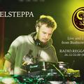 Rebelsteppa outa Bushtown Studio 26.12.13