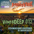 VibesDEEP 012 (Exclusive Unlocked for 48 Hours)