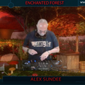 Enchanted Forest Alex Sundee 10-4-2021