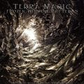 Terra Magic - Frozen Window Patterns 28.02.2021