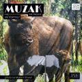 KorneJ - Muzak on Fridays #009