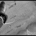 David Byrne Presents: Masters of Soundtracks -Nino Rota