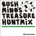 Bushmind's Treasure Hunt Mix