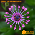 Sowing the Seeds Mix Series - Josh Holiday