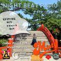 Night Beat Radio #67 w/ DJ Misty