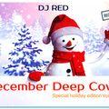 DJ RED  DECEMBER DEEP COVER VOLUME 15