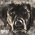 A Few Tunes with Black Dog Radio #250