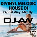 Divinyl Melodic House 01