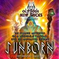 DJ Sunborn - The Strange Adventure Of A Psychedelic Traveler Into The Antimatter Universe