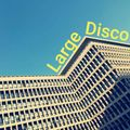 Large Disco 18