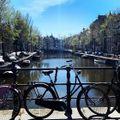 "GoodMorning Amsterdam ""Covid Sunrise"""