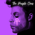 Colin Peters presents: THE PURPLE ONES