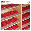 DIM241 - Eliza Rose