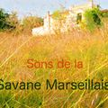 Sons de la Savane Marseillaise