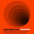 Delectronic Soul: Awakening - Deep, Warm House Mix