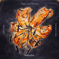 KATIUSHA   Tiger Lily Flower   The Wormhole   19 07 CR2019