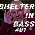 shelter in bass #01