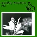 KURŠIŲ NERIJUS #12