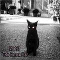 The Black Cat (Sm127) 115-120bpm