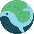 A gdje su kitovi? 09.04.2021. Udruga Zemlja za nas