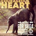 Courageous Heart: Playlist for 1 hr Yoga Live Stream