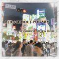 OLD SCHOOL J-POP MIX Vol.2
