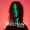 Joris Voorn Presents: Spectrum Radio 206